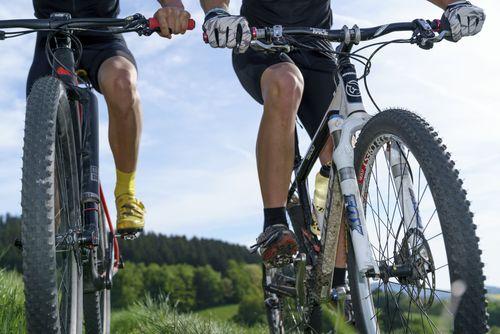Mountainbike fahren in Willingen